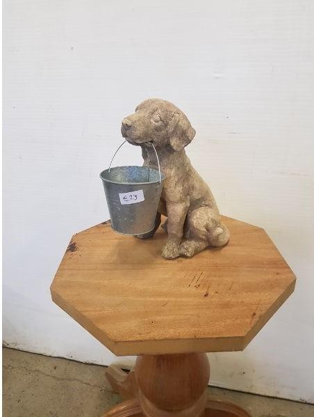 Dog with bucket