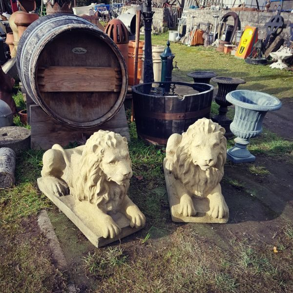 Langport Lions Main